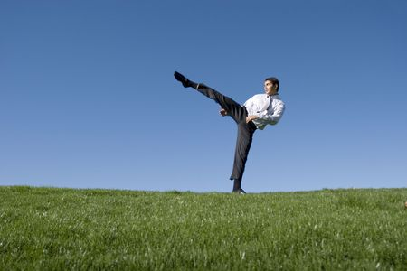 Businessman doing karate moves on green grass Stock Photo - 2074520