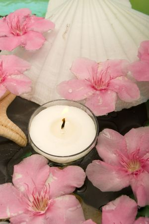 revitalize: Aromatheraphy with flowers in water Stock Photo
