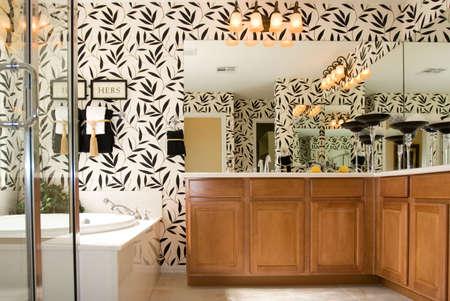 bathroom mirror: Modern bathroom in a house