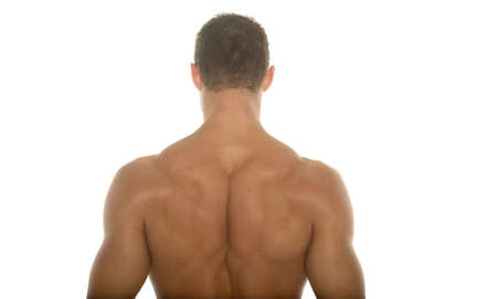 back training: Back of a muscular man