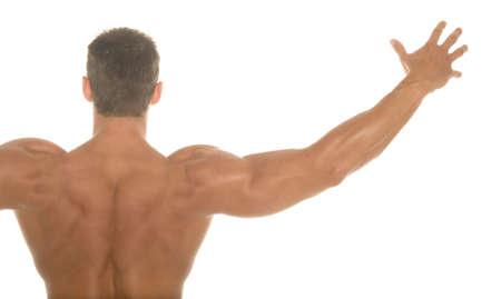 back training: Back of a champion body builder