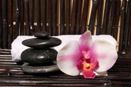 stones and orchid flowers on bamboo Stock Photo - 3171209