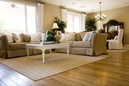 Modern tastefully decorated living room Stock Photo - 3364852
