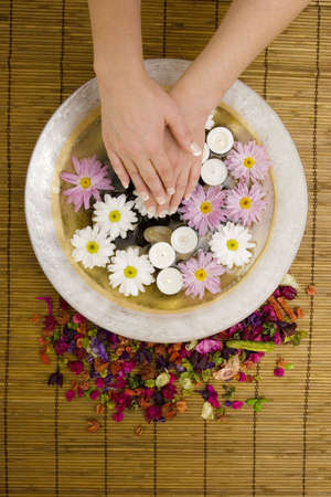 manicured: Womans manicured hands with daisies