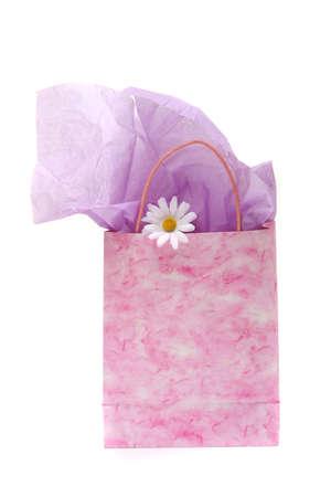 gift spending: Shopping bag isolated on white background