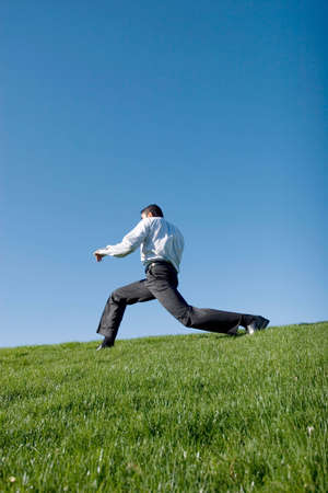 Businessman doing karate moves on green grass Stock Photo - 3401455