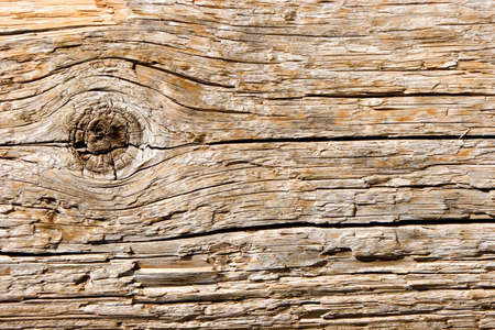 Wood texture closeup as background