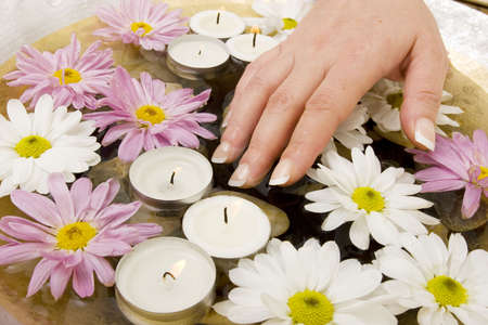 manicured hands: Womans manicured hands with daisies