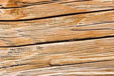 Wood texture Stock Photo - 3802741