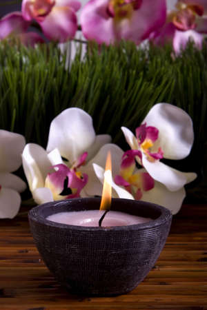 Spa candle, orchid flowers and green grass for alternative therapy Stock Photo - 4000798