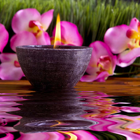 Spa candle, orchid flowers and green grass for alternative therapy Stock Photo - 4385275