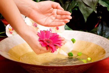 handcare: Womans hands in a bowl of water