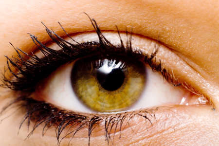 Hazel color eye of a woman photo