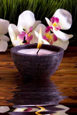 Spa candle, orchid flowers and green grass for alternative therapy Stock Photo - 4600934