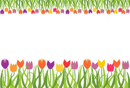 Tulip border frame Illustration