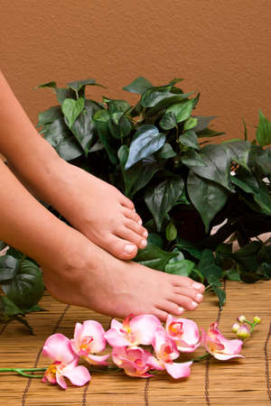 Pedicured female feet with orchid 版權商用圖片