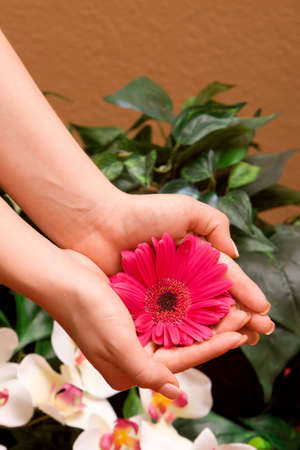 manicured hands: Womand manicured hands with flowers