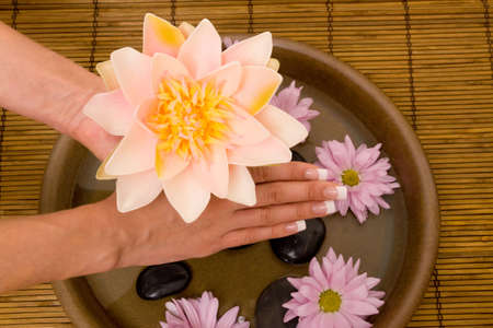 handcare: Woman holding waterlily with manicured hands
