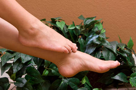 Womans pedicured feet in front of ivy plant