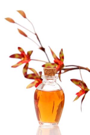 Therische Öle und Orchidee auf weißem Hintergrund Standard-Bild - 6176250