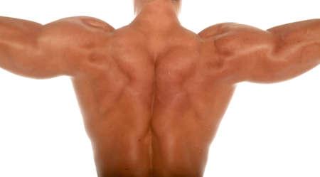 Muscular body builder on white background Archivio Fotografico