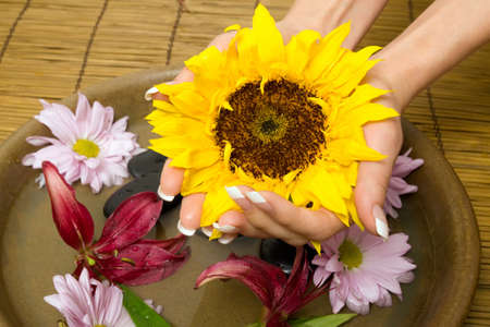 salon and spa: Woman holding a sunflower with her hands