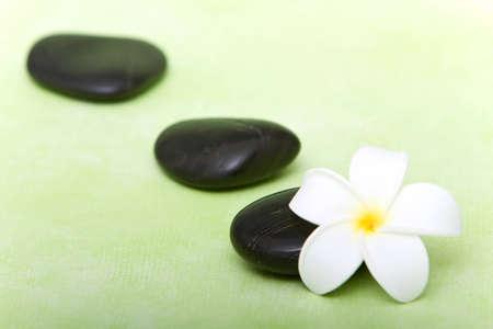 Hot spa stones and tropical frangipani flower photo