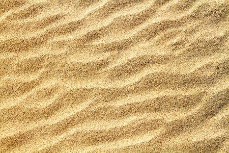 Ripples on closeup sand texture