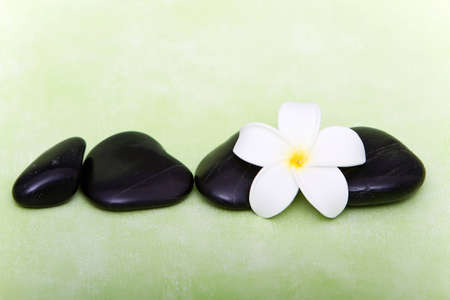 Hot spa stones and tropical frangipani flower Stock Photo - 7125672
