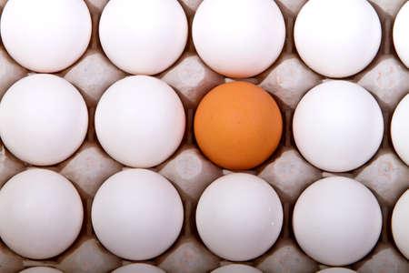 Golden egg Stock Photo - 7353163