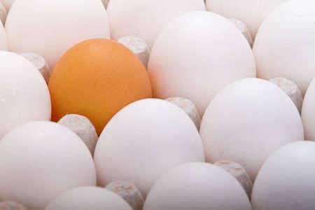 Selective golden egg Stock Photo - 7431932