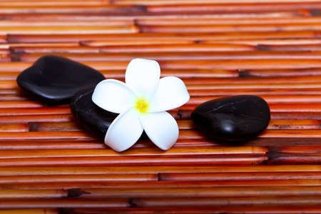 Hot spa stones and tropical frangipani flower on bamboo mat Stock Photo - 7643435
