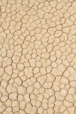 Cracked drought desert ground texture photo