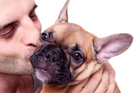 indoor shot: Beautiful little french bulldog puppy with a male model Stock Photo