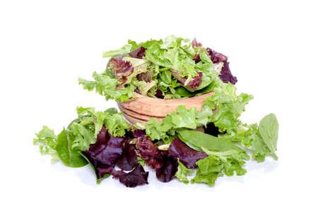 lechuga: Hojas verdes de mezcla de primavera org�nicos para ensalada