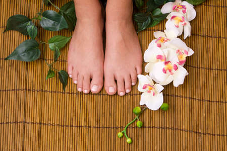 Pedicured female feet with orchid Reklamní fotografie