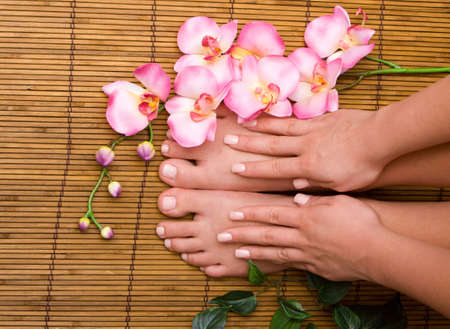 handcare: Pedicured female feet with orchid Stock Photo
