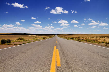 route desert: Empty desert road stretching to horizon
