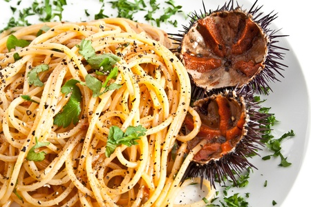 pilluelo: spaghetti italiano de pasta con erizo de mar
