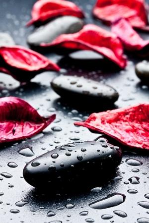 spa rocks: wet black stones and petal