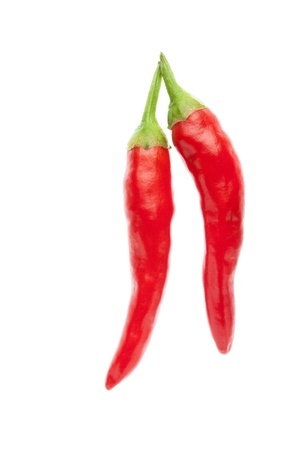 chili pepper photo