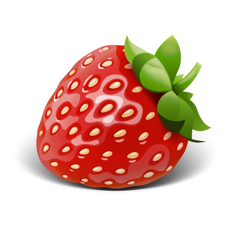 Strawberry vector. EPS 10 file