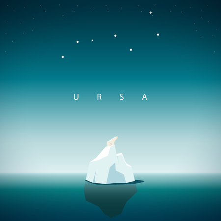 Polar bear sits on the iceberg and looks at the constellation URSA major.