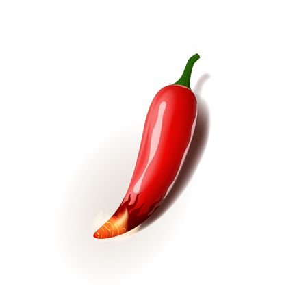 Realistic vector illustration of chili pepper is on fire.