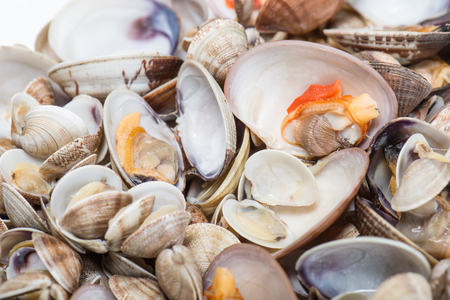 prepared dish: Fresh seafood, clams and cockles prepared in the dish Stock Photo