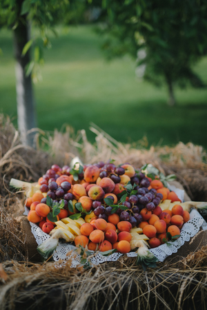 Big plate with summer fruits shot outdoors - vertical shot 版權商用圖片