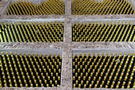 Wine bottles during fermentation