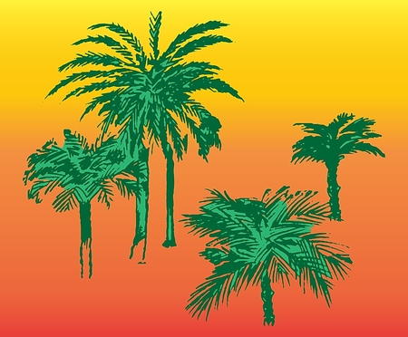 Palm trees color image of a tropical vegetation on an orange red background Ilustracja