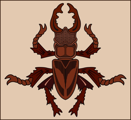 Insect on a beige illustration.