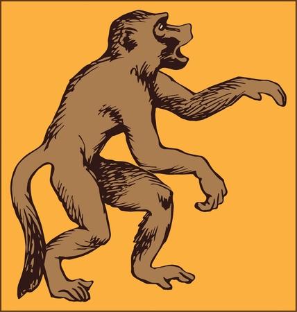 Monkey animal illustration.